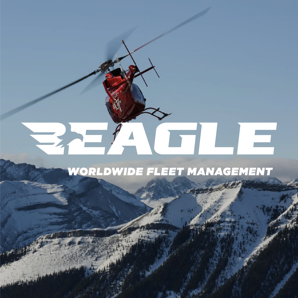 <p><strong>Eagle Copters</strong></p>