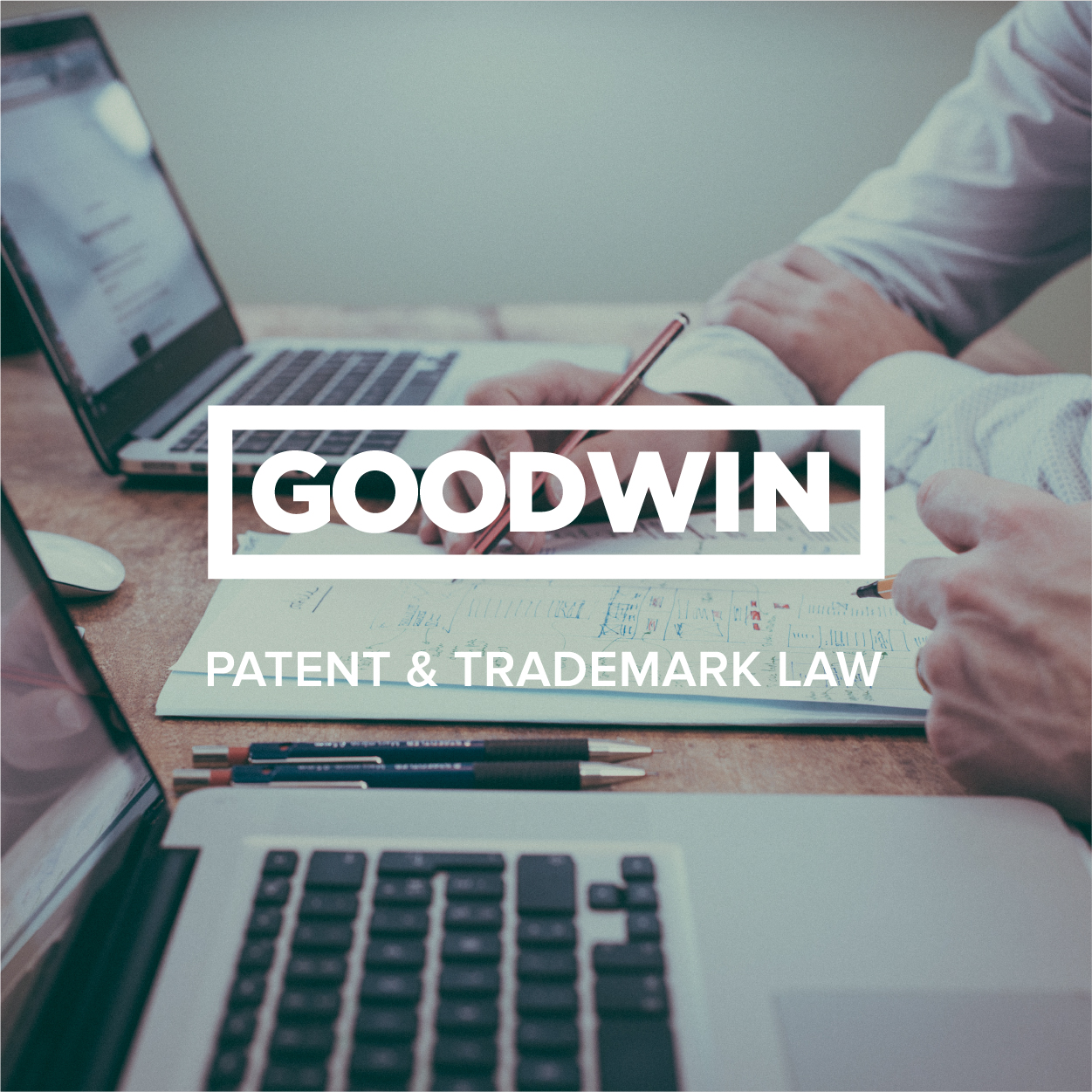 <p><strong>Goodwin Law</strong></p>