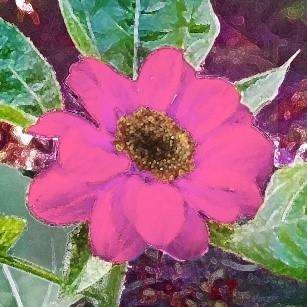 Sunflower-art-1.jpg