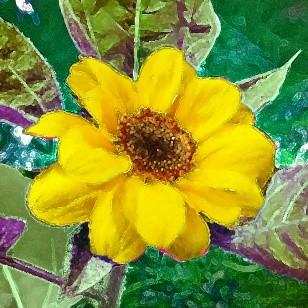 Sunflower-art-2.jpg