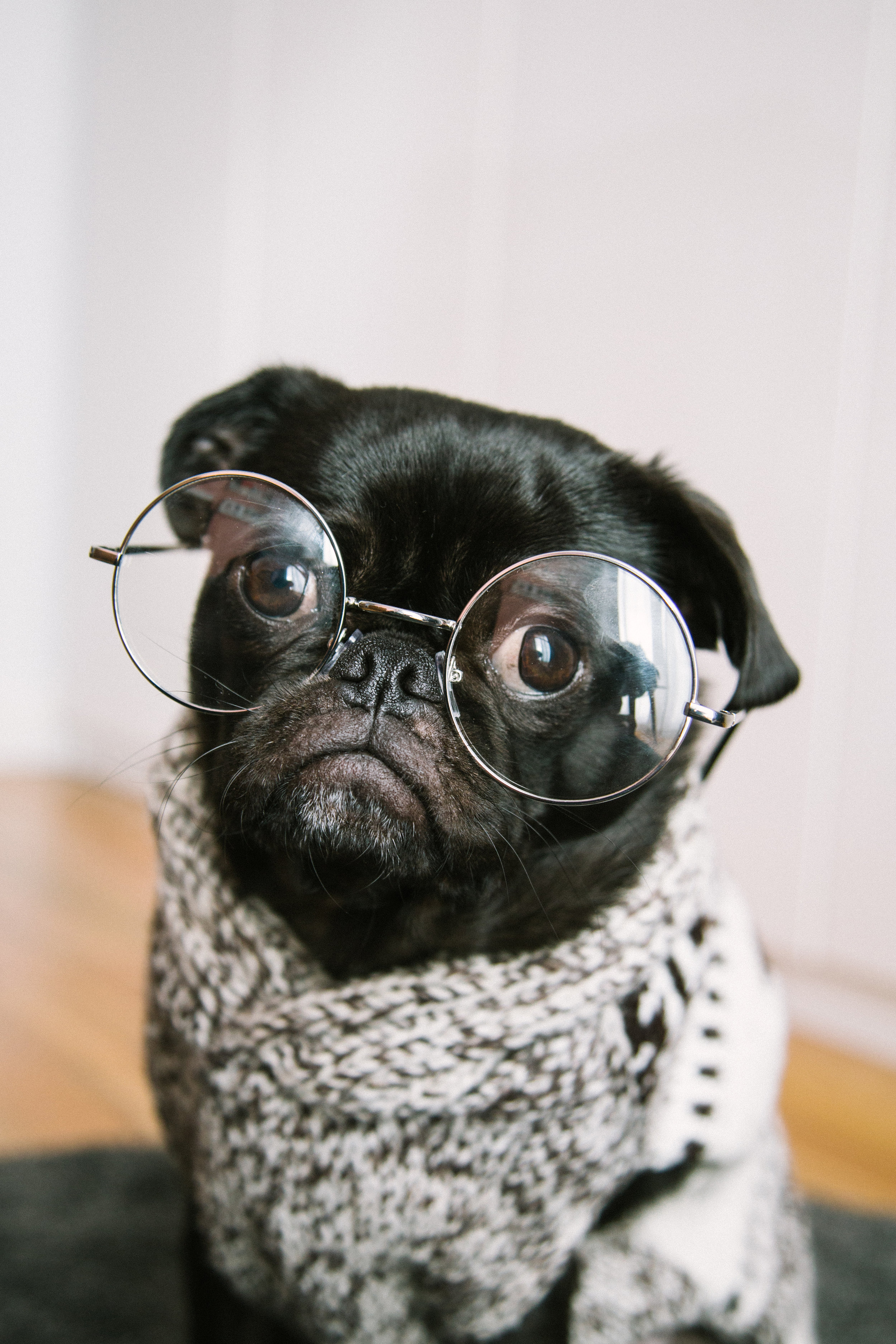 Where are my reading glasses?