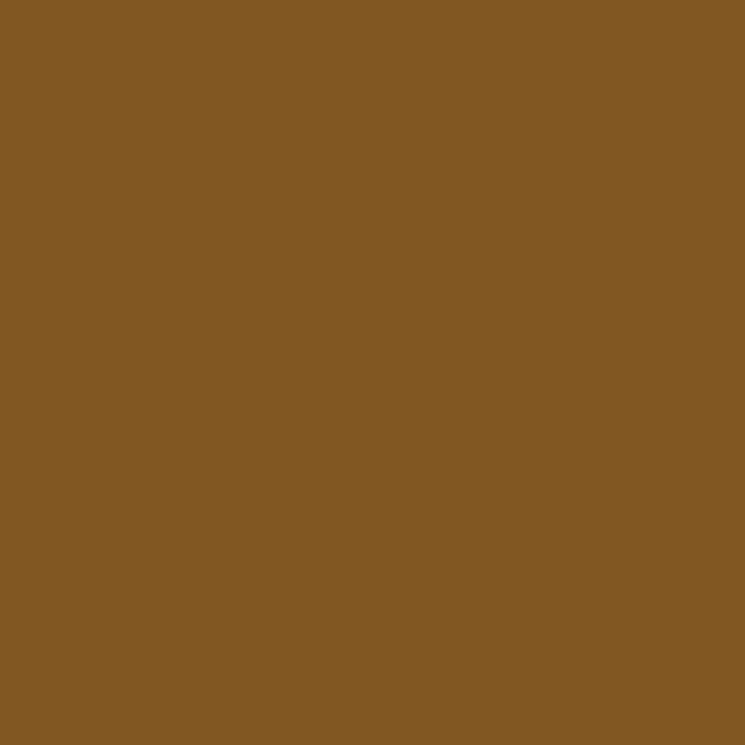 Current Colour Obsession: Browns