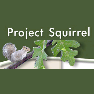 project-squirrel-sm.png