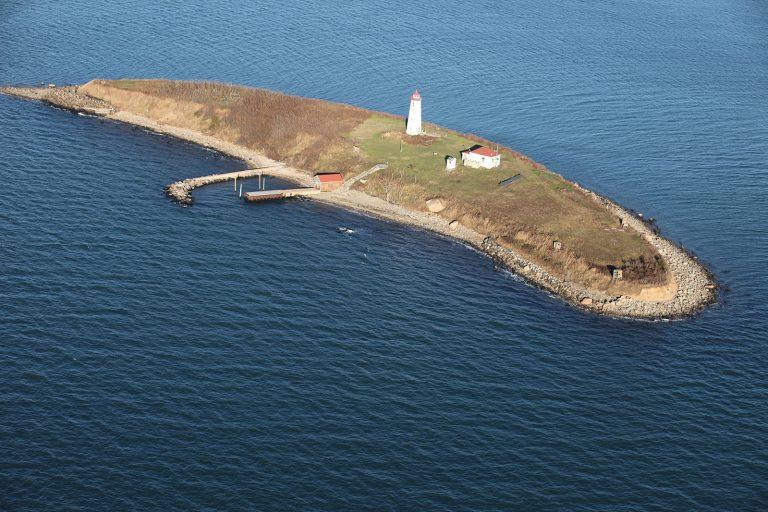 Stewart_B._McKinney_National_Wildlife_Refuge-Falkner_Island_CT-768x512.jpg