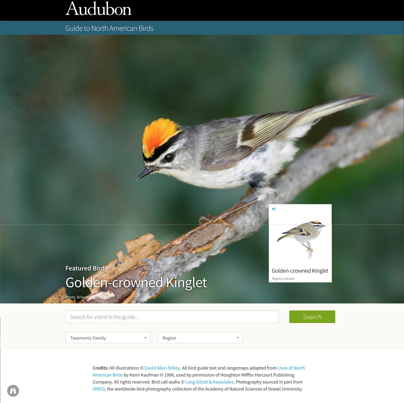Audubonweguide.jpg