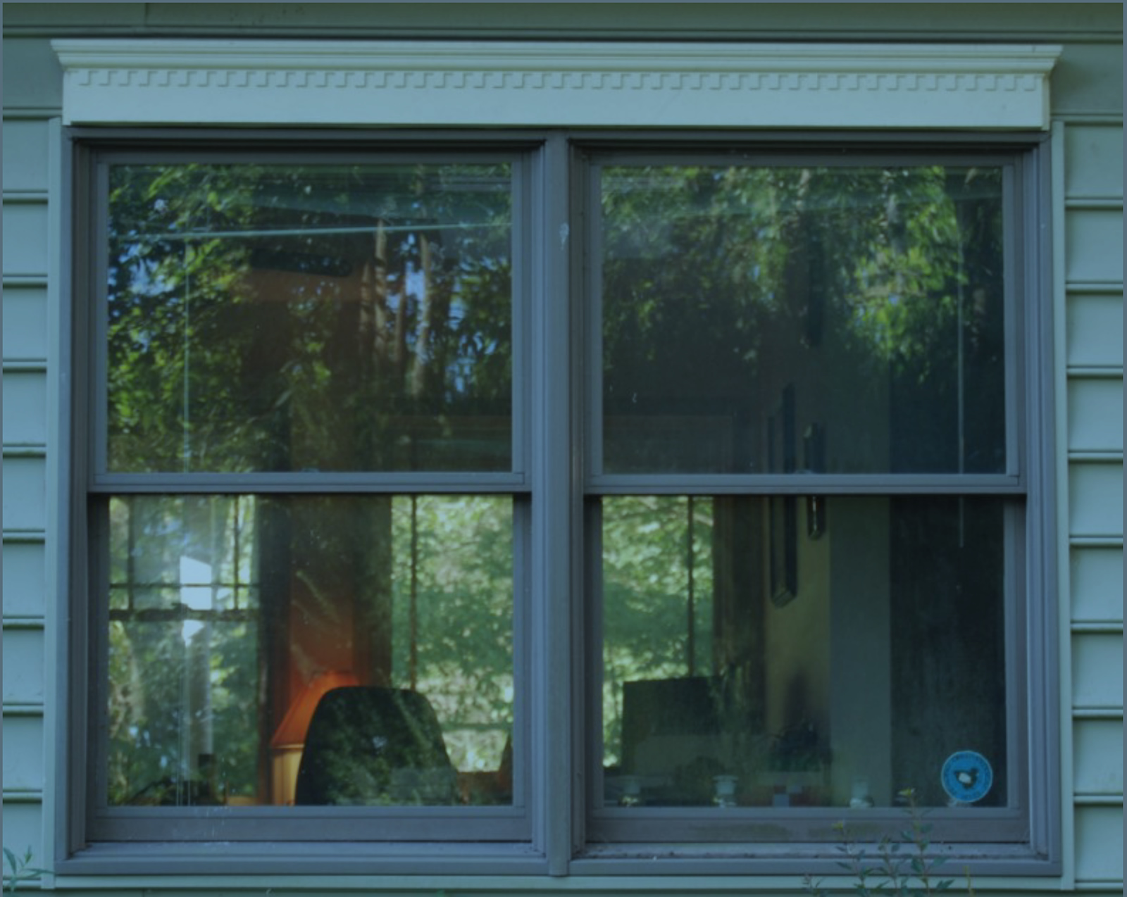 Making Your Windows Safer For Birds Menunkatuck Audubon