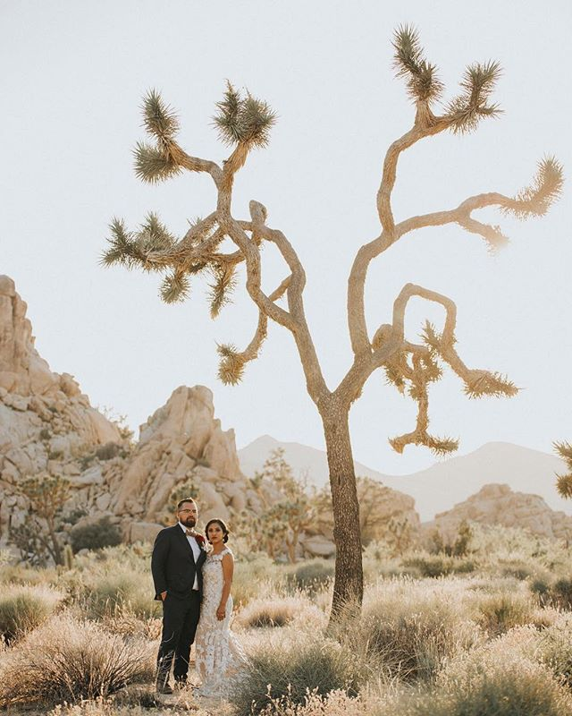 Can't wait to shoot tomorrow at Joshua Tree! By far one of our favorite locations.