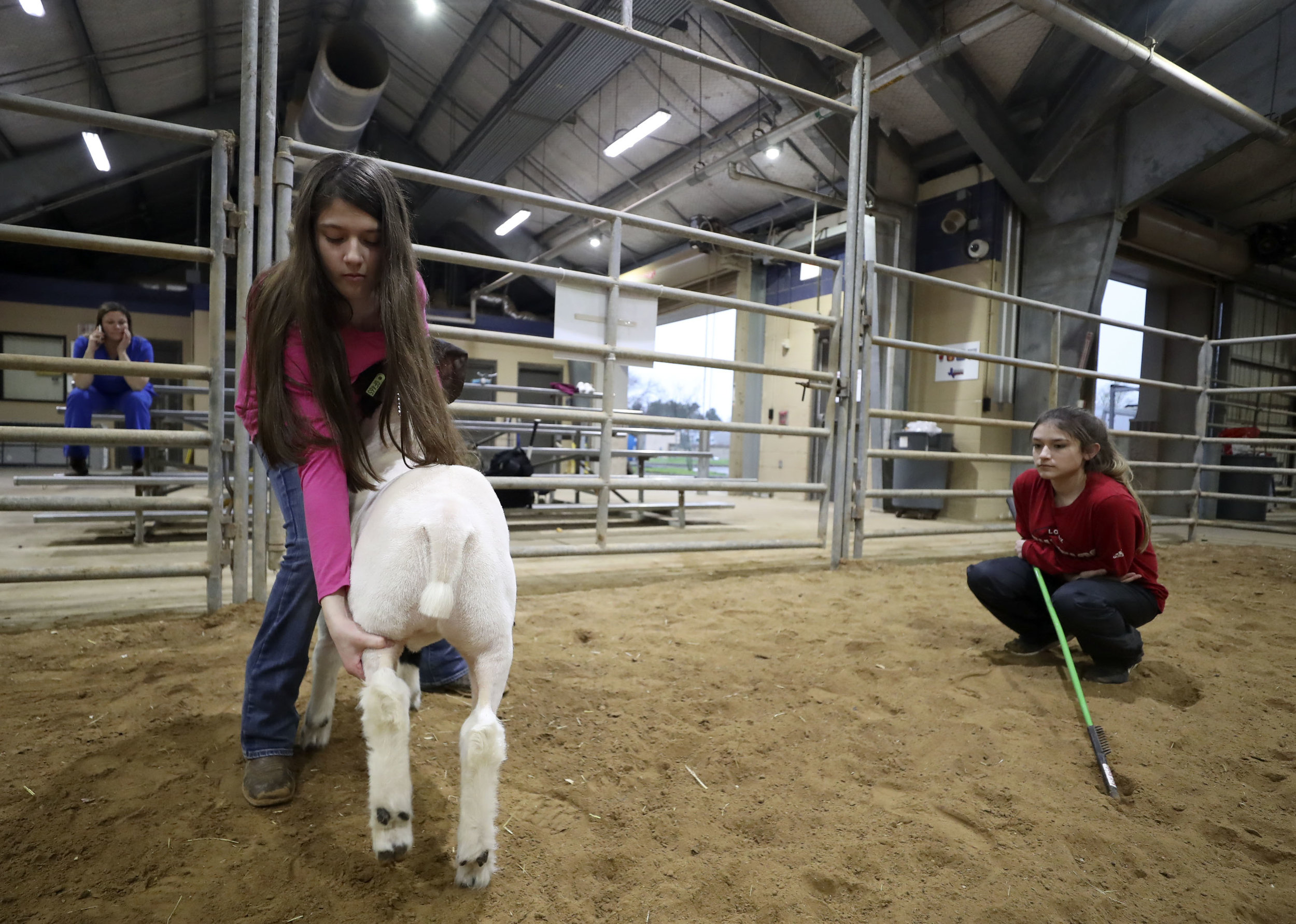 Morgan Perez helps her sister, Destiny, pose her goat in the practice arena as their mom looks on at the Dickinson Agriculture Science Facility on Tuesday, Feb. 26, 2019. Their mother, Christy Perez, frequently helps and watches the girls take care of their animals.