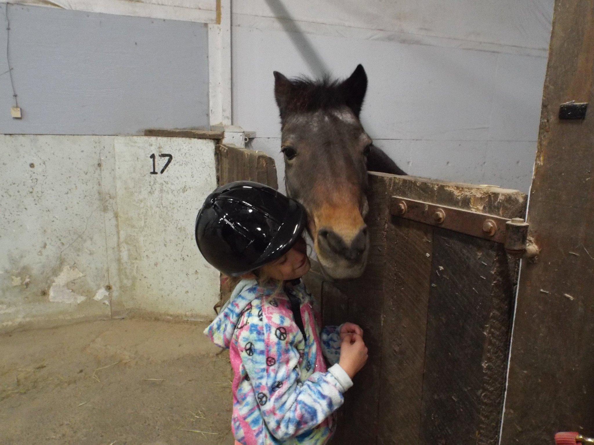 2015 - Maya - MackHill Riding 2.jpg