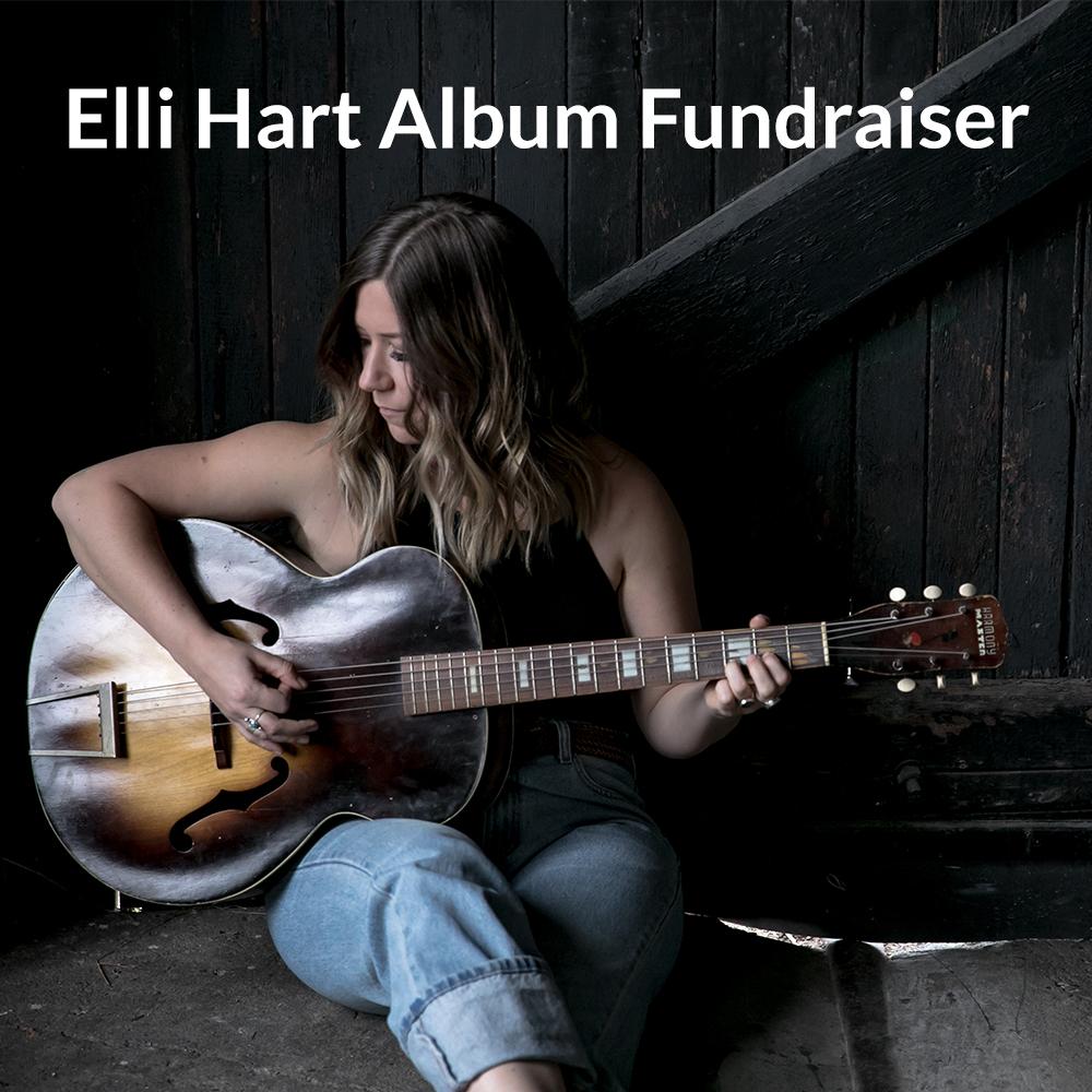 Album Fundraiser WS Square asset.jpg