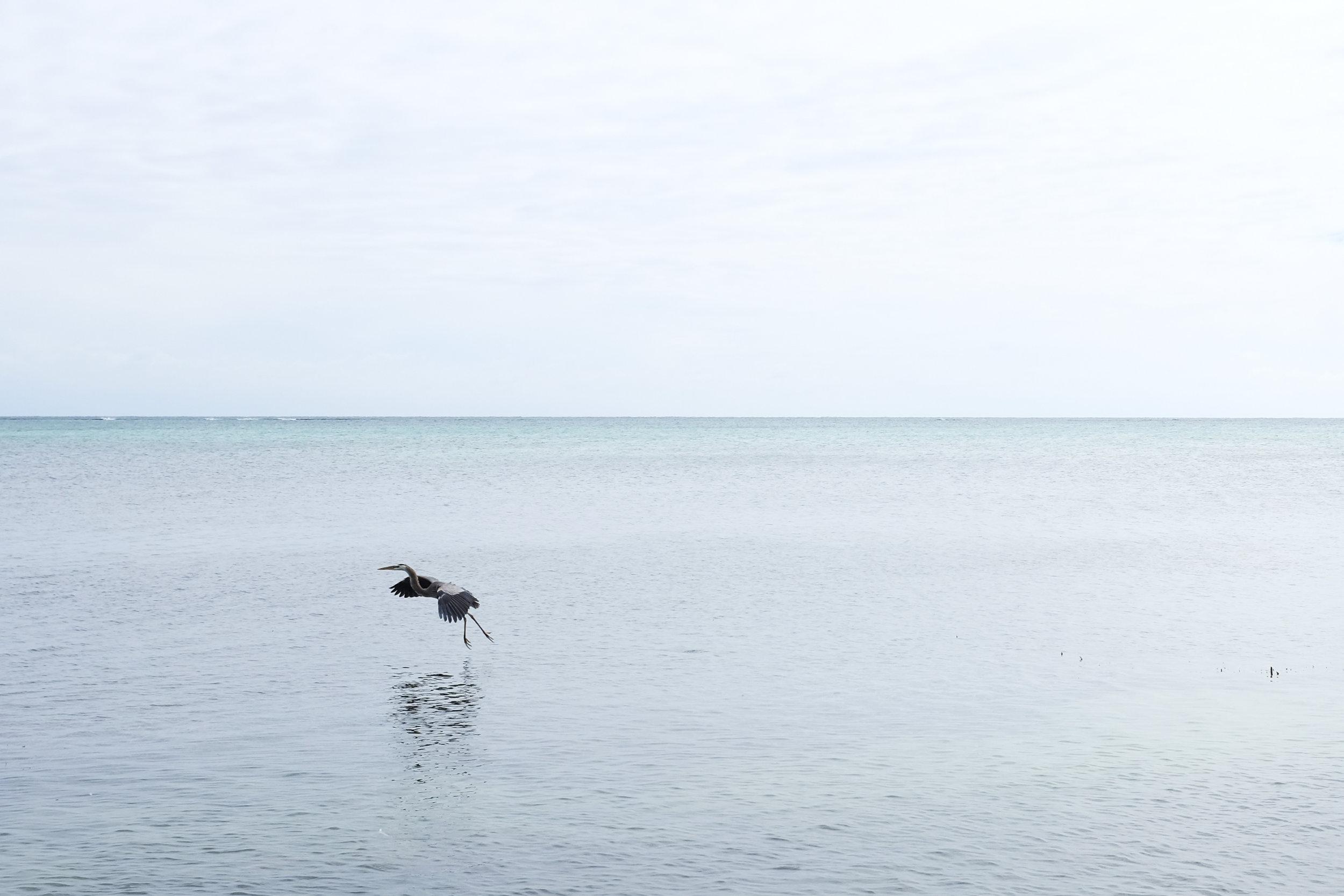 Belize-3365.jpg
