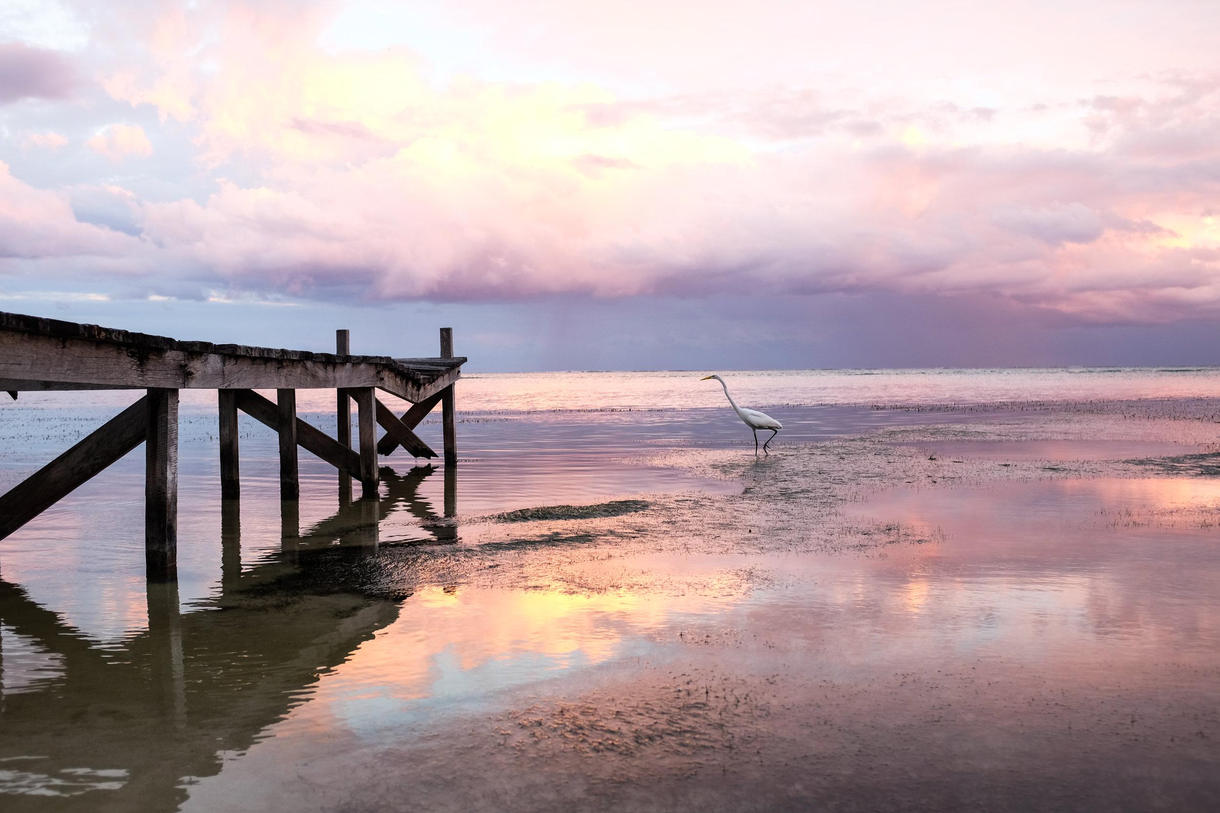 Belize-3493.jpg