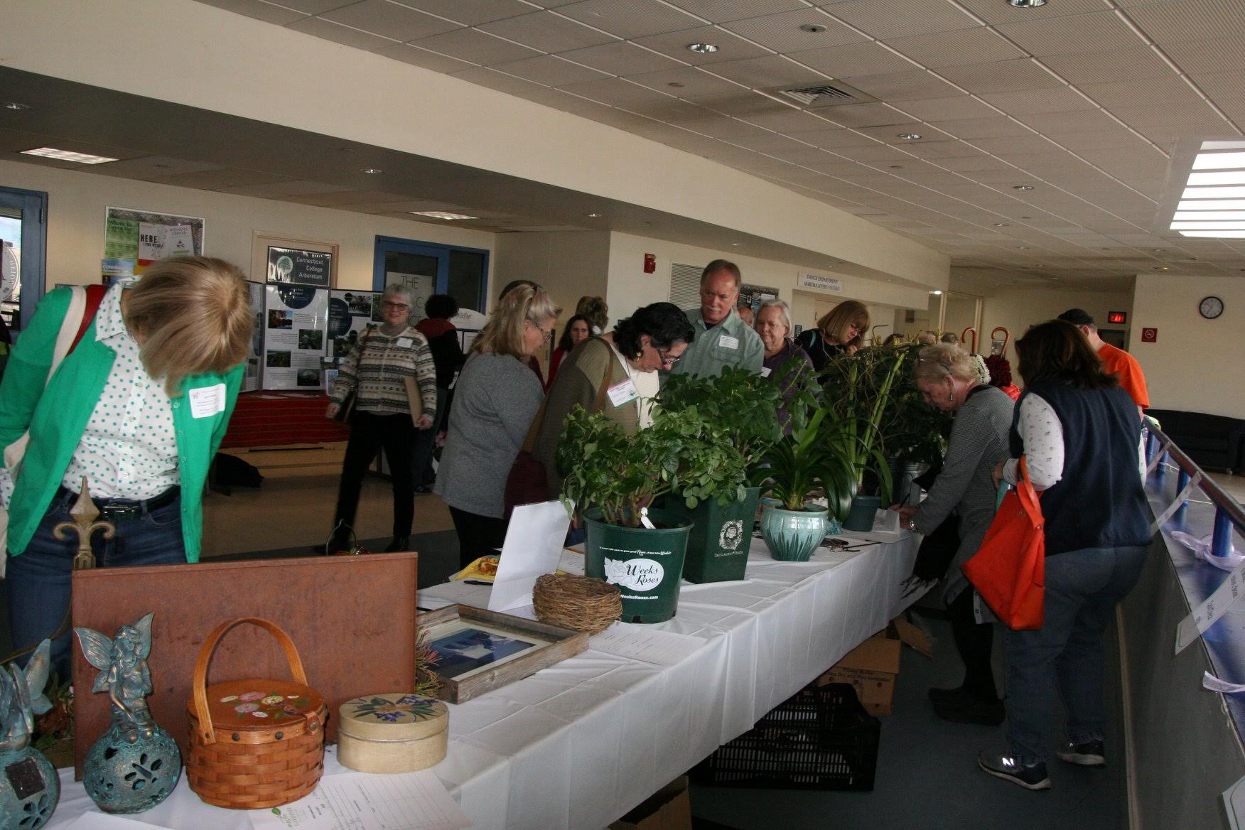 MG Silent Auction