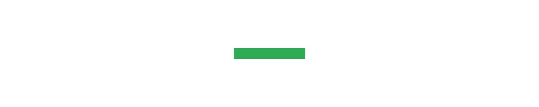 green bars.jpg