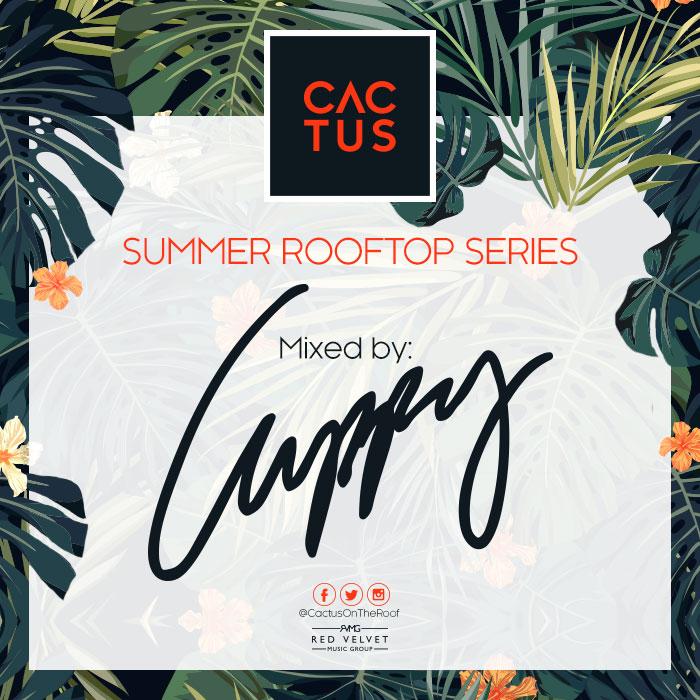 Cactus-Mix-Artwork DJ cuppy .jpg