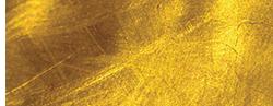 Duo logo .png