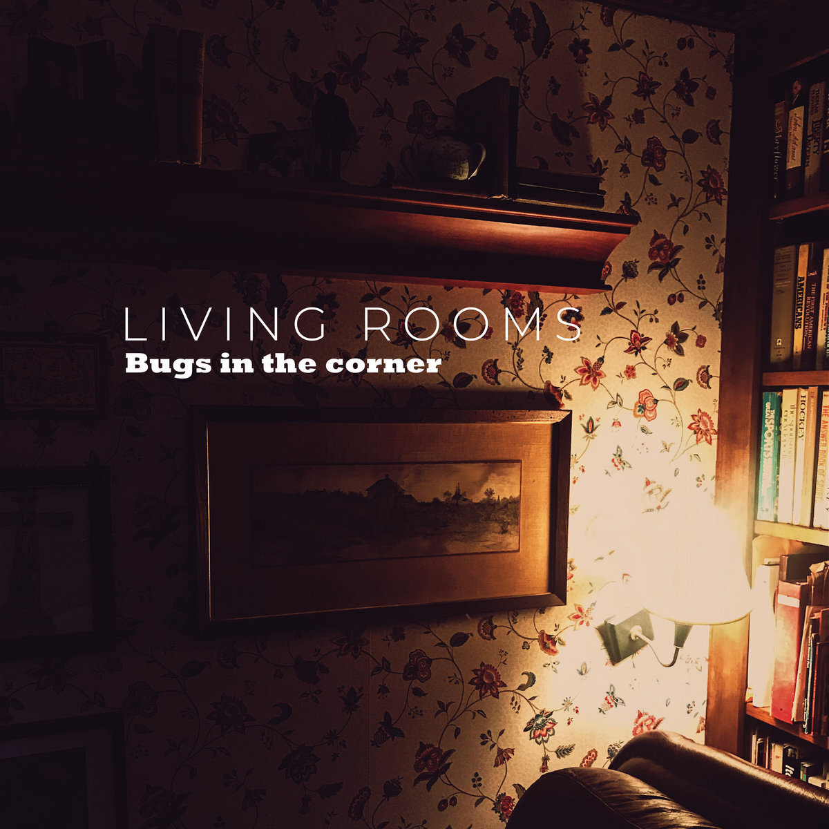 Bugs in the Corner -  Living Rooms  (produced, engineered, mixed)  guitars, bass, drums, lead & backing vocals