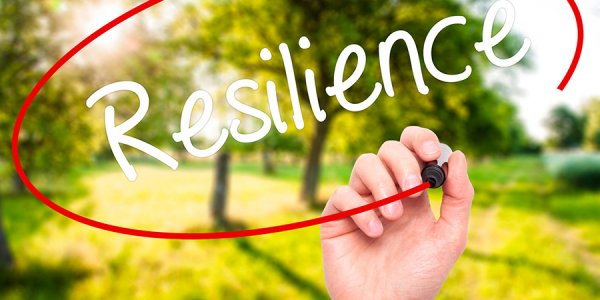 Resilience-600x300.jpg