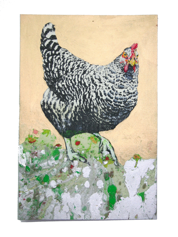 Smart Hen (Banded Plymouth Rock)  Gouache, Oil and Litho on paper, 5.5 in W x 8 in H
