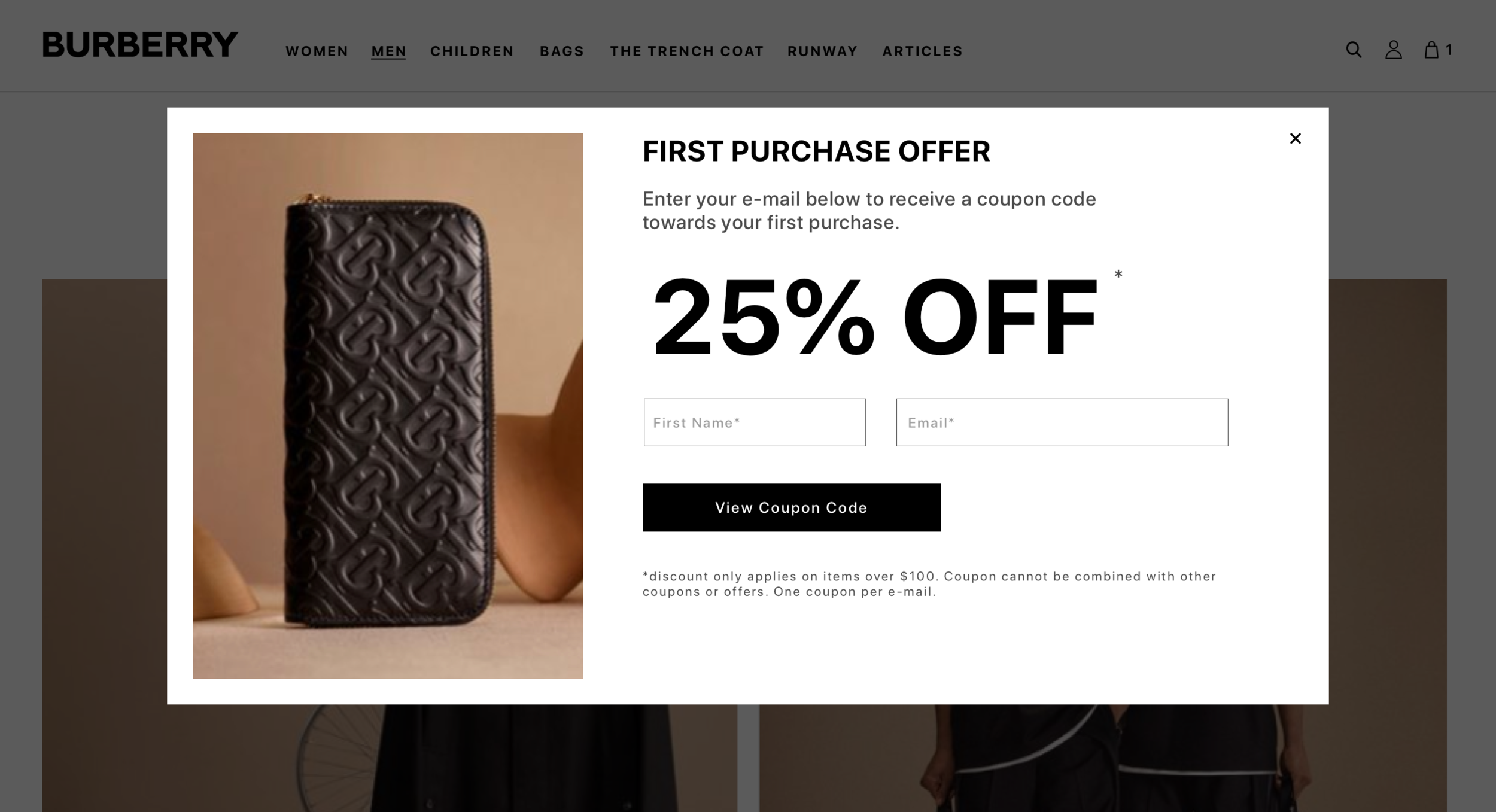 Luxury Retail Webpage Coupon
