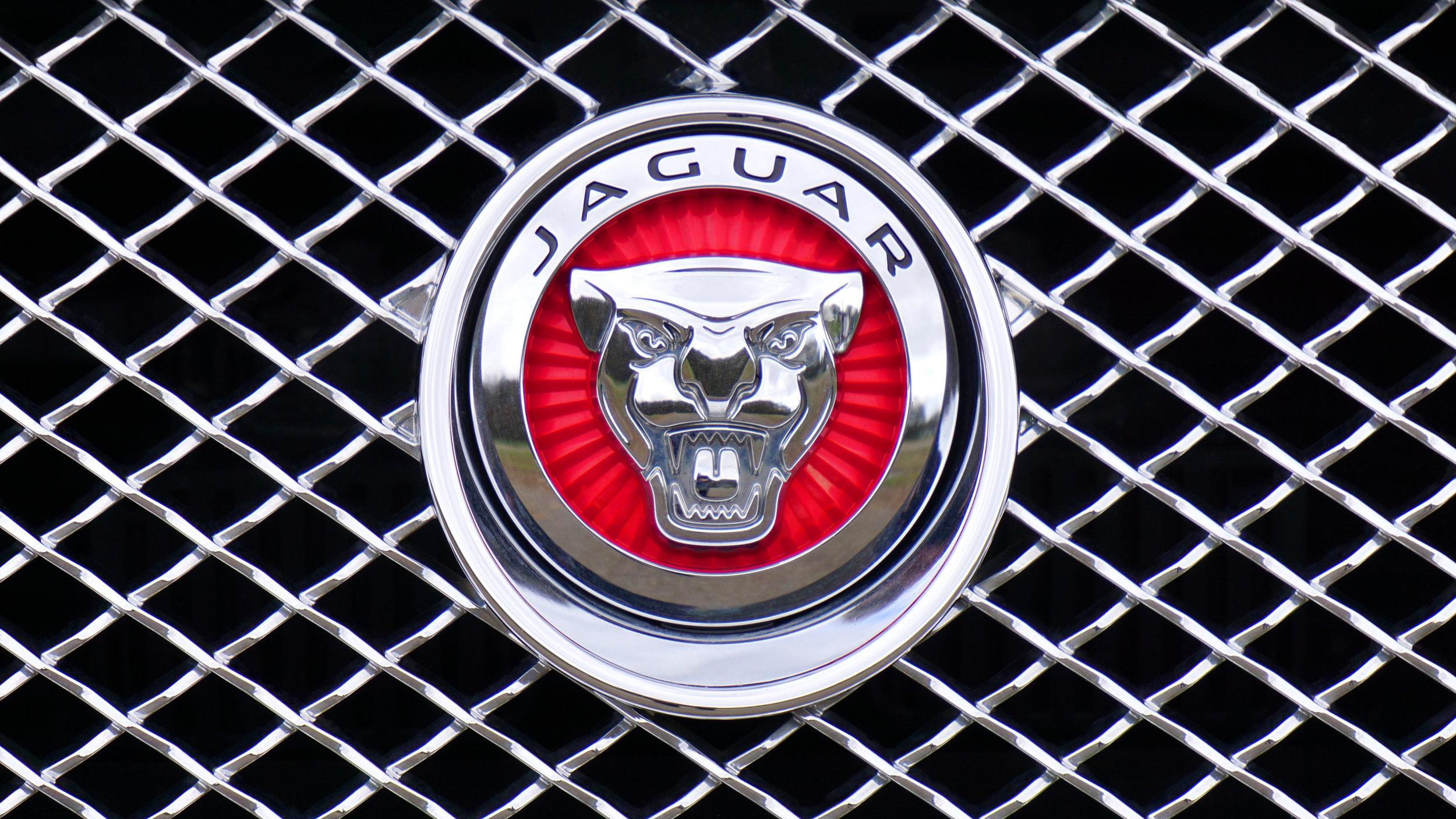 Canva - Jaguar Emblem.jpg