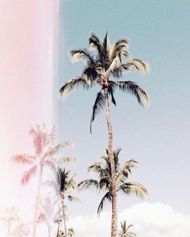 Forever Friday mood || 🌴
