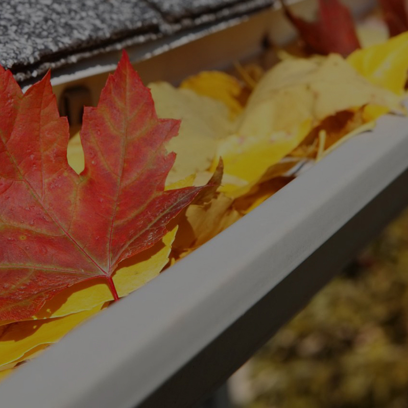 GUTTER CLEANING - We'll remove the debris from your gutters and make sure the downspout is free of clogs.Debris Removal | Trough Flush | Backage Elimination