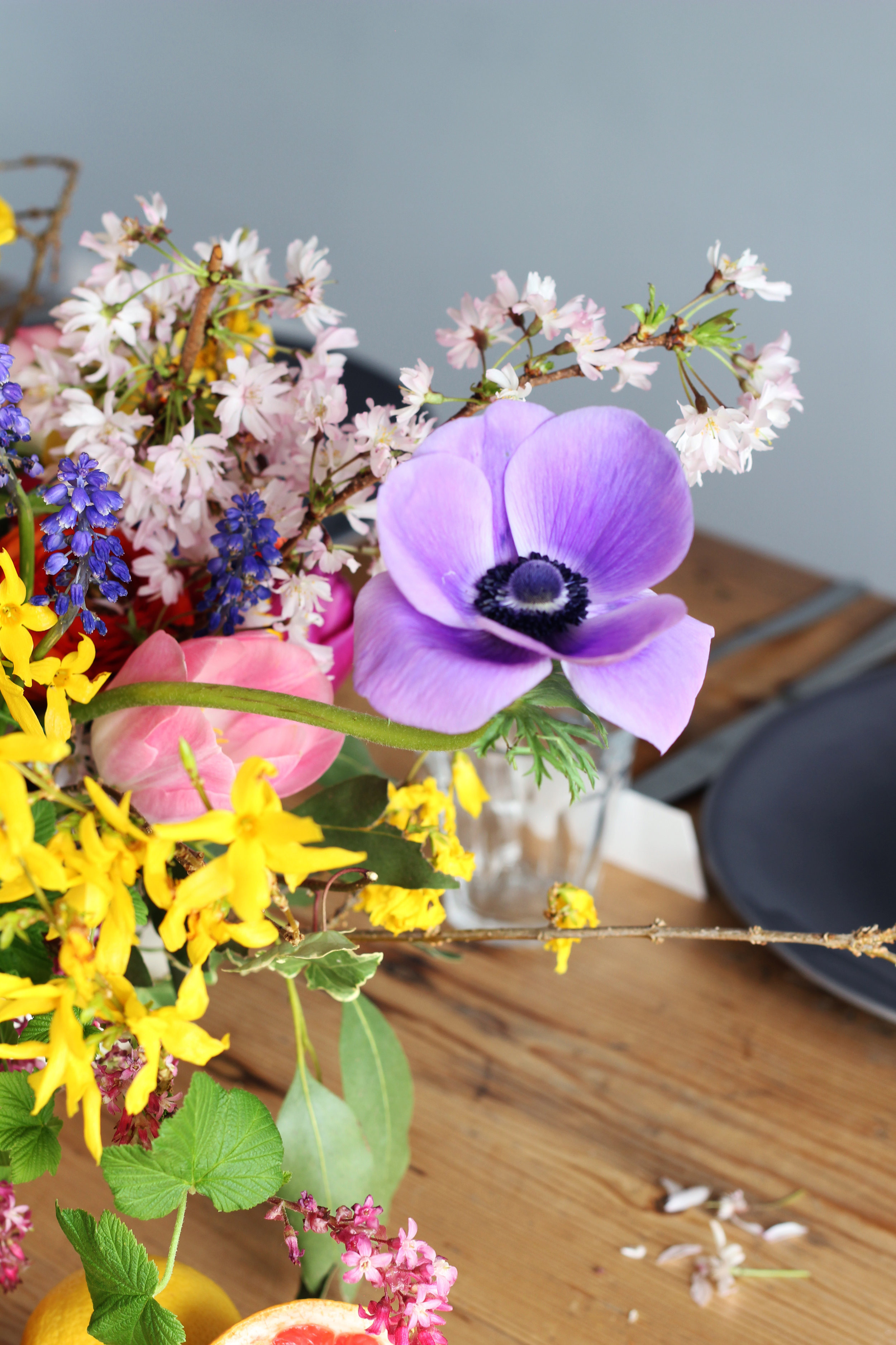 Callie-Pettigrew-Fruity-Florals-3.jpg