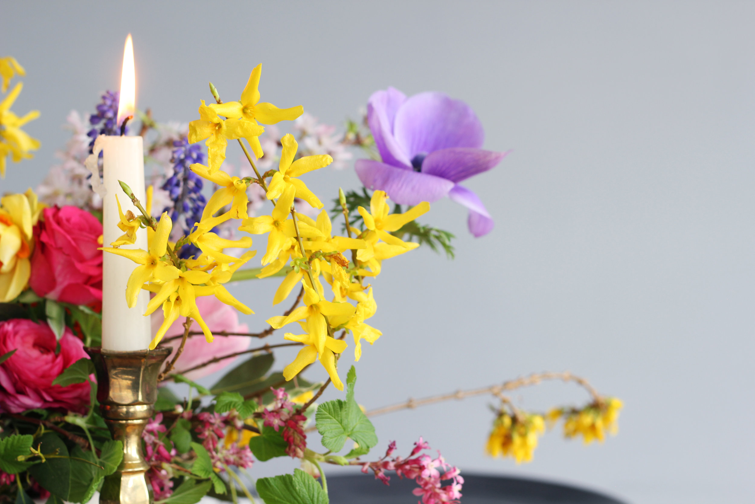 Callie-Pettigrew-Fruity-Florals-26.jpg