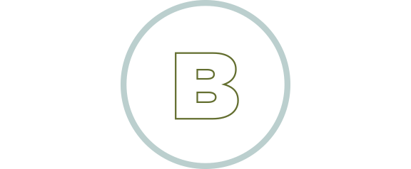 b-icon2wide.png