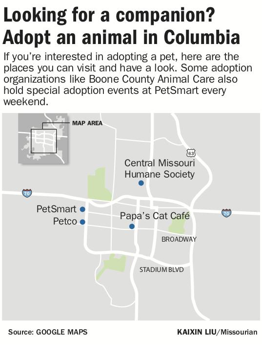 Animal Adoption.png