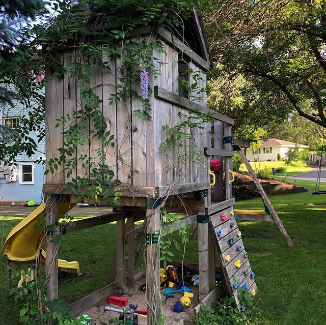 Children's swing set built using brackets and cedar only.  Two Blue Moon Wisteria vines were sent up the pillars.