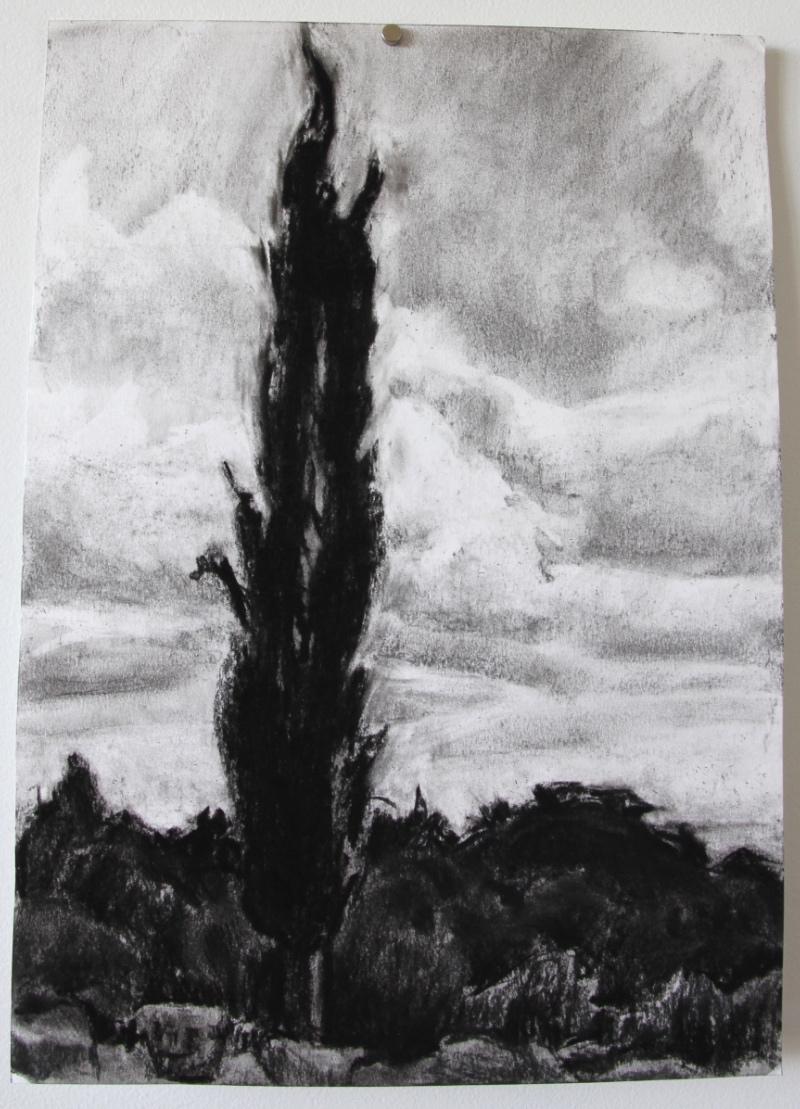 charcoaltreelandscape.jpg