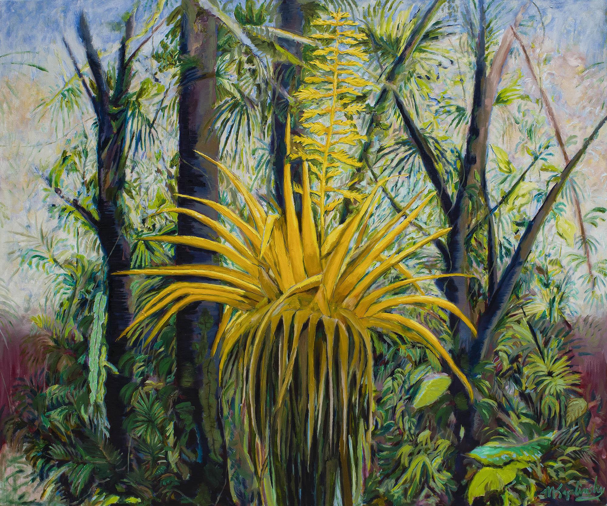 Sunrise Costa Rica - $8000
