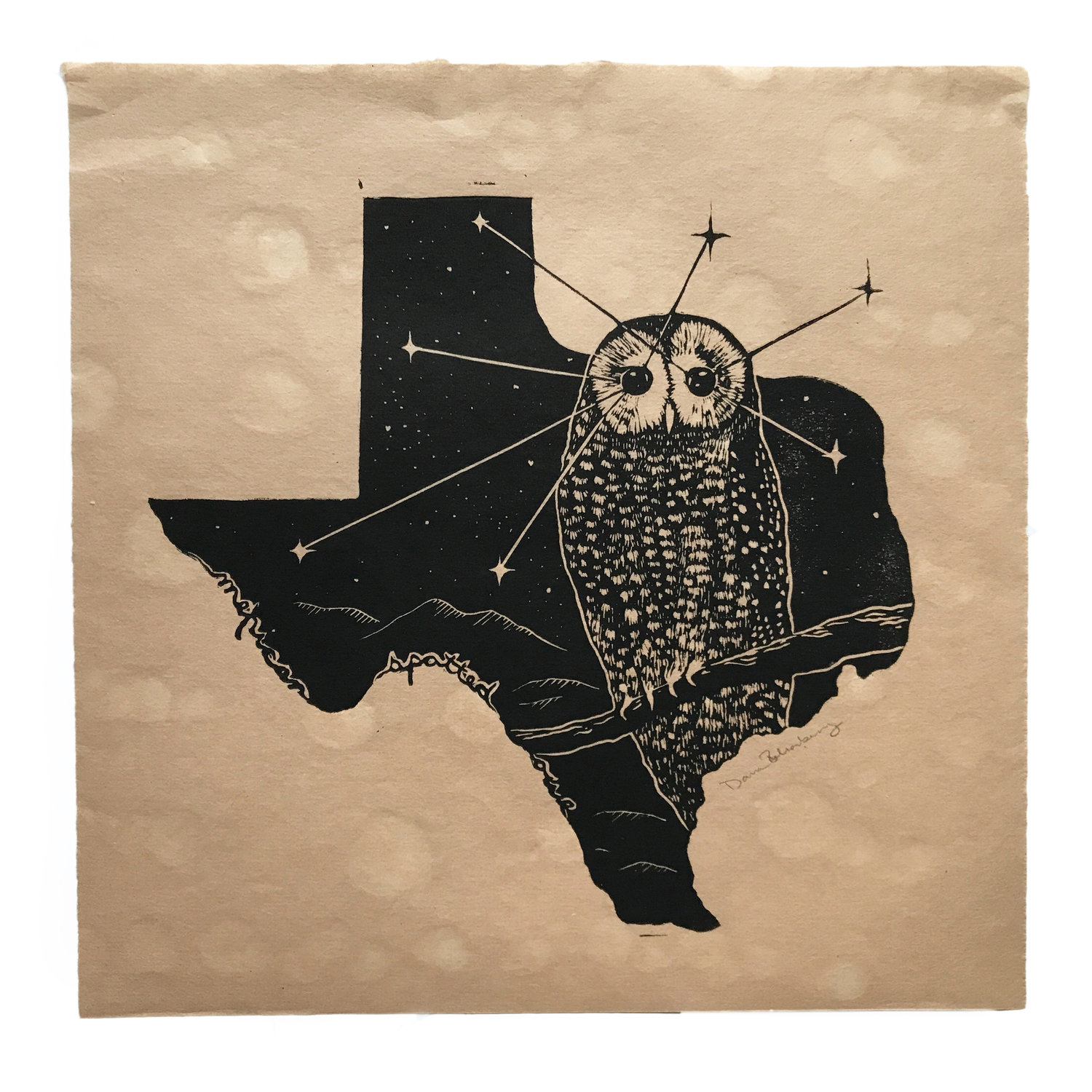 Then Come The Night - Mexican Spotted Owl - $200
