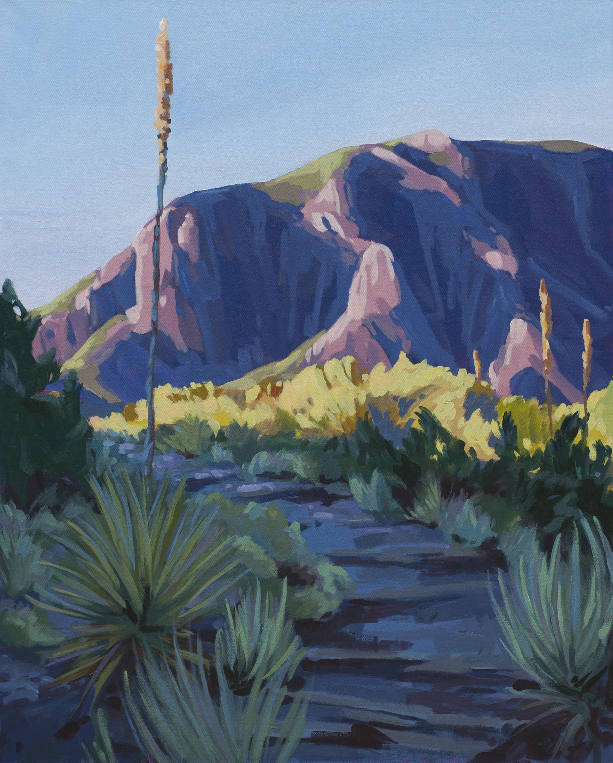 Mallow Yucca - SOLD