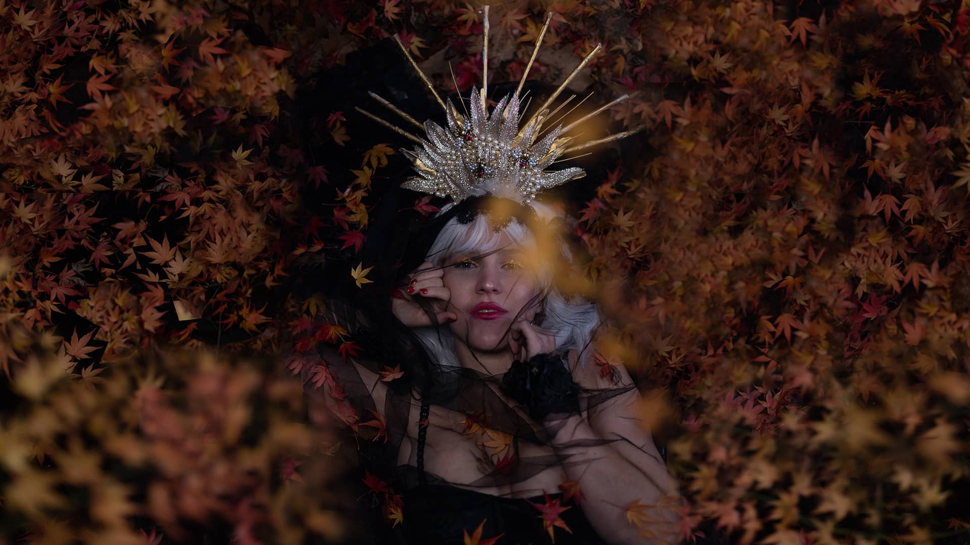 PSY Leaves 1 HD.jpg