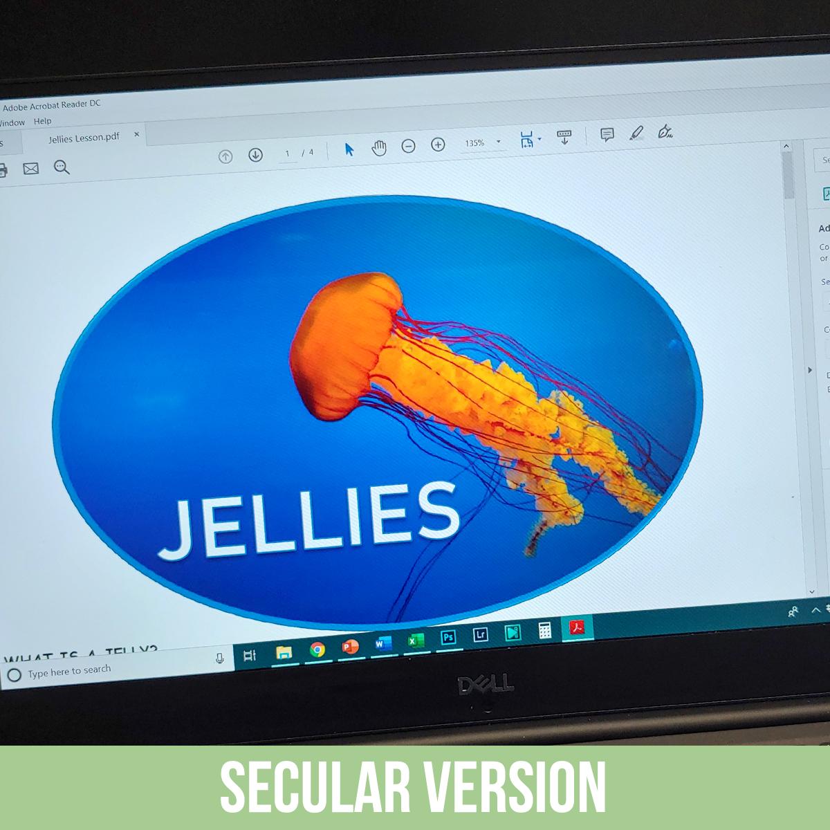 Jellies PDF.jpg