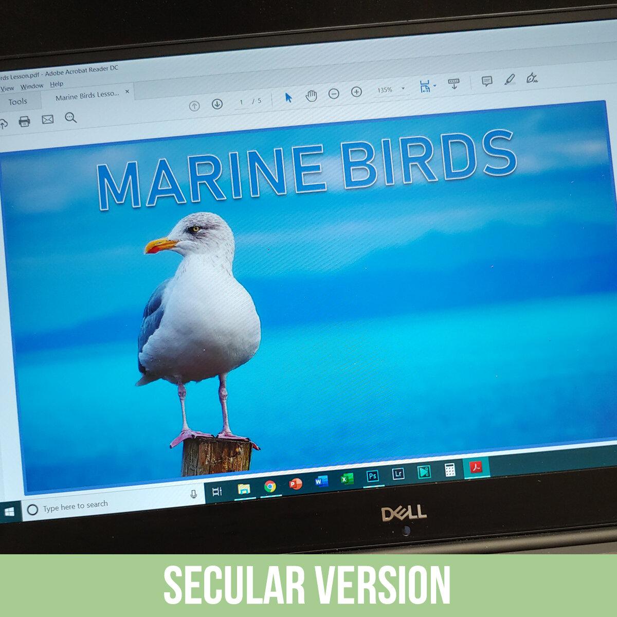Marine Birds PDF.jpg