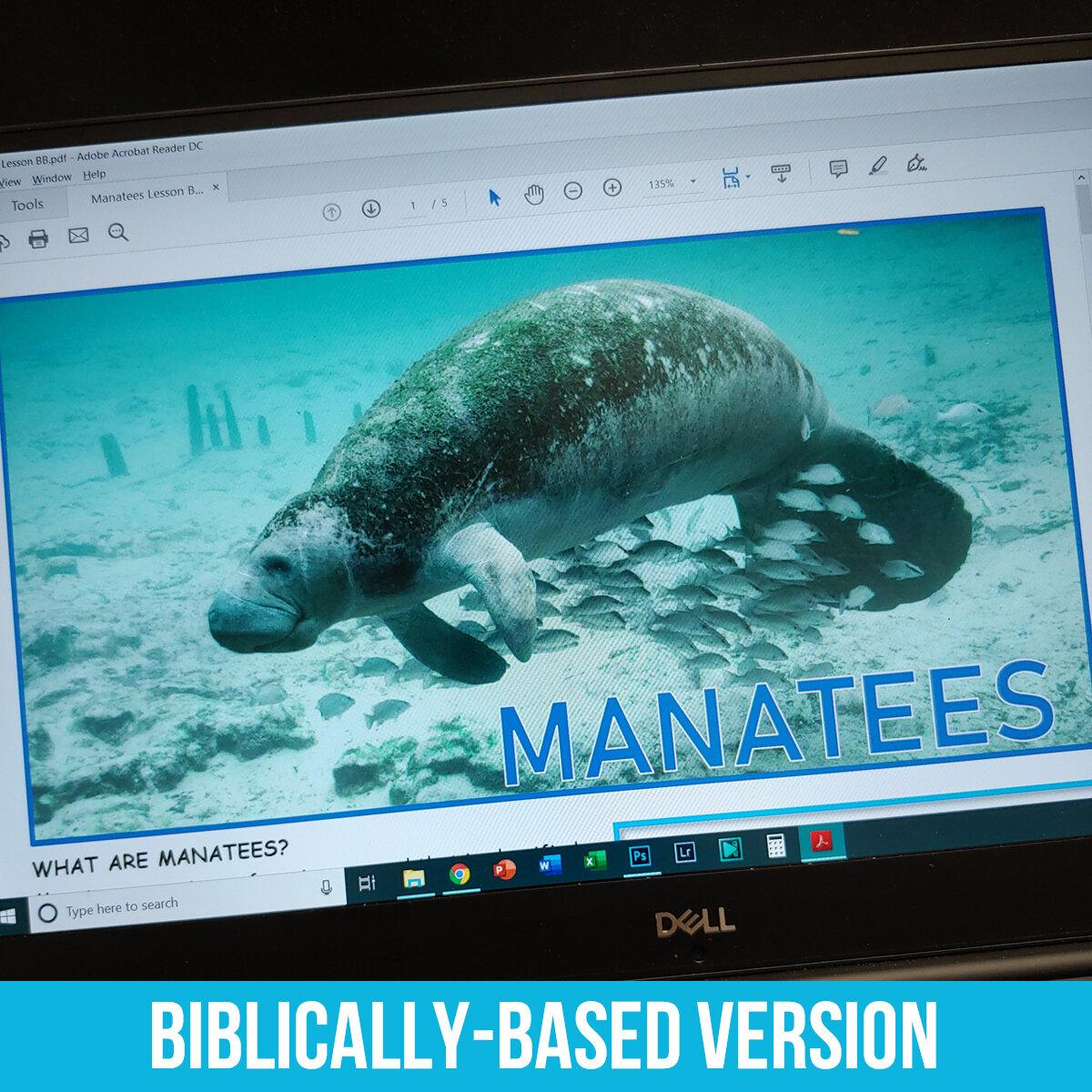 Manatee PDF BB.jpg