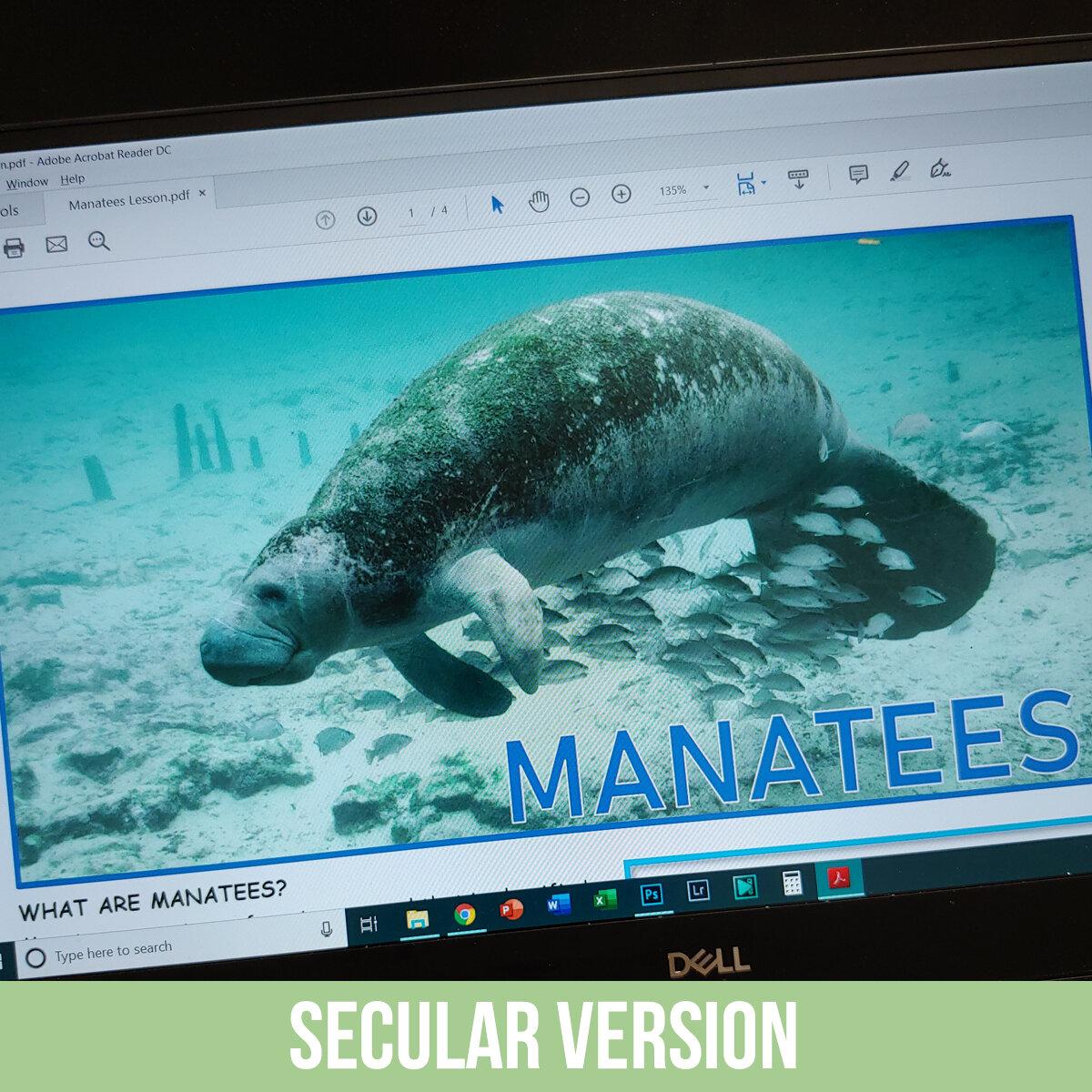 Manatee PDF.jpg