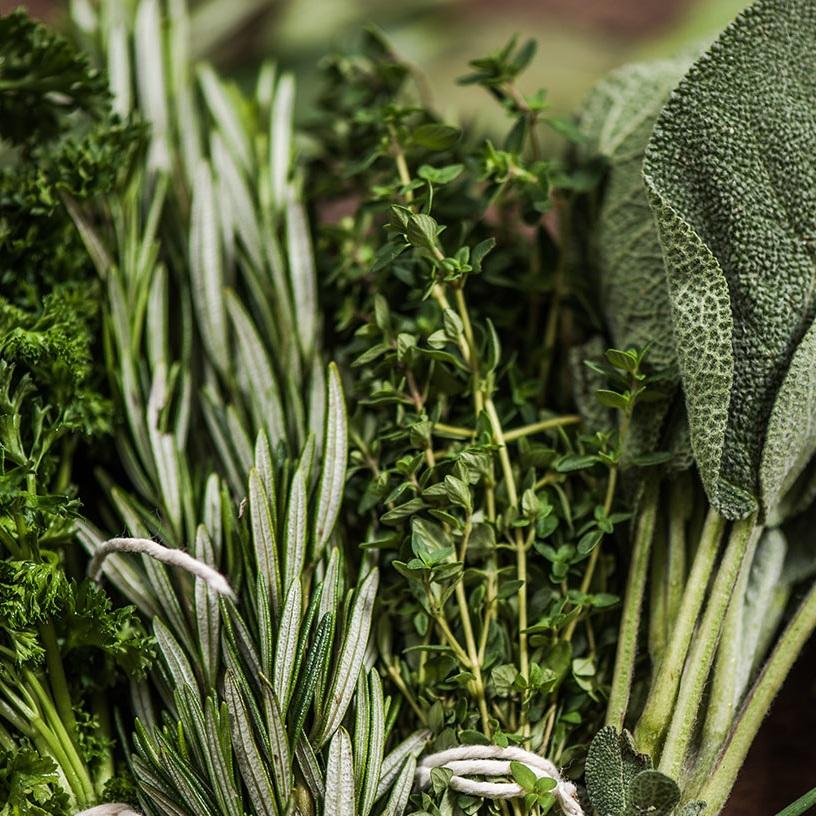 Herbs_2_1500.jpg