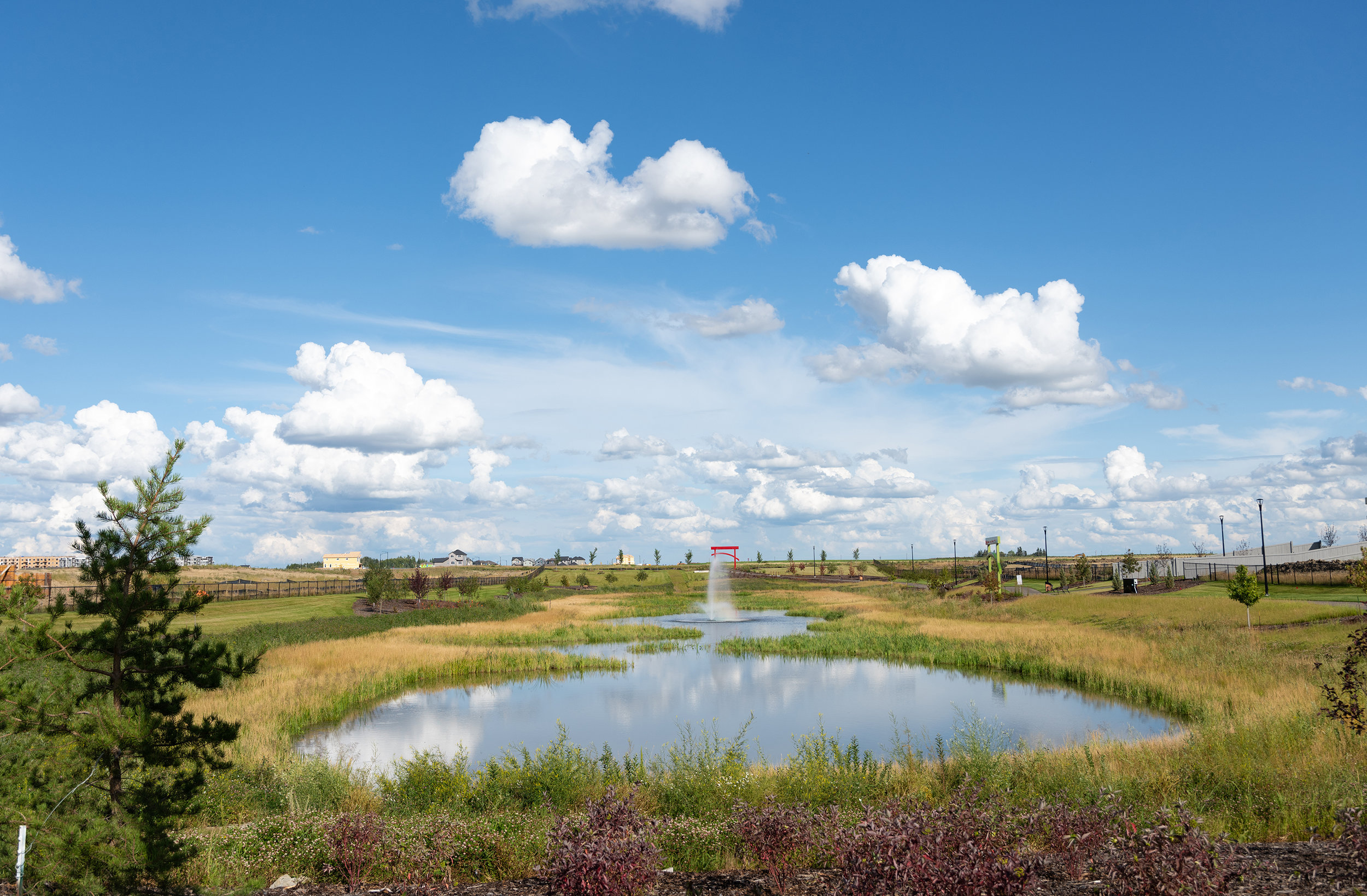 Aerated Pond -