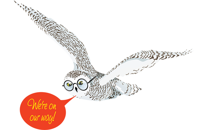 owl-on-our-way-web.png