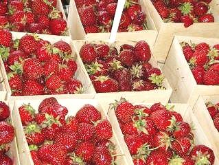 strawberries-1548040.jpg