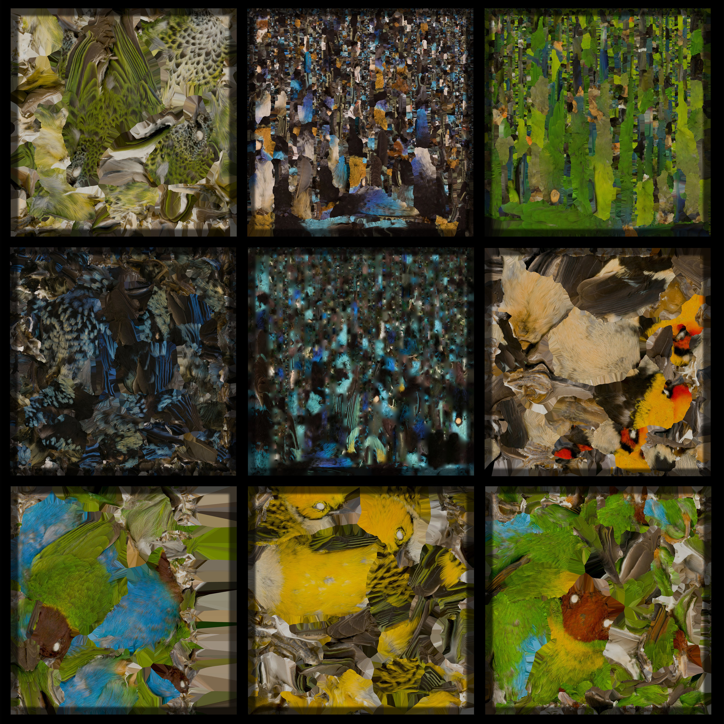 Birds I view - A virtual lab of 3D scansfrom the Moore Lab of Zoology at Occidental