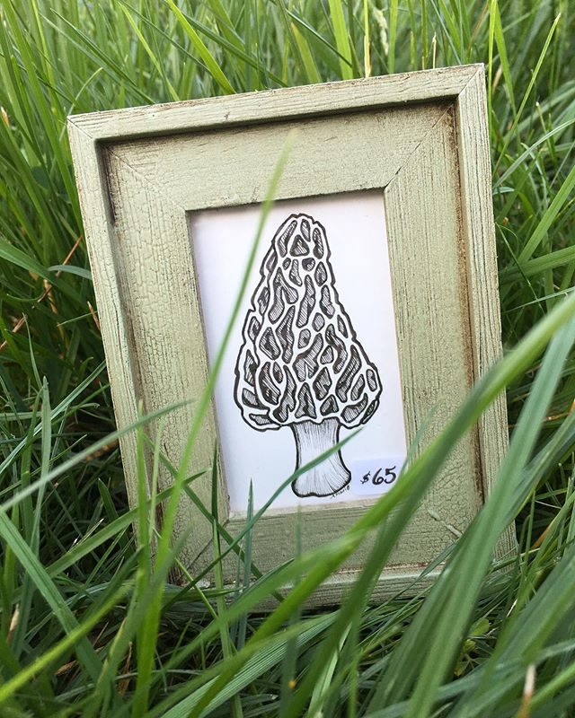 I spy with my little eye...a morel!! Find this original and myself right outside the Art Museum here on State Street, Booth ST546!