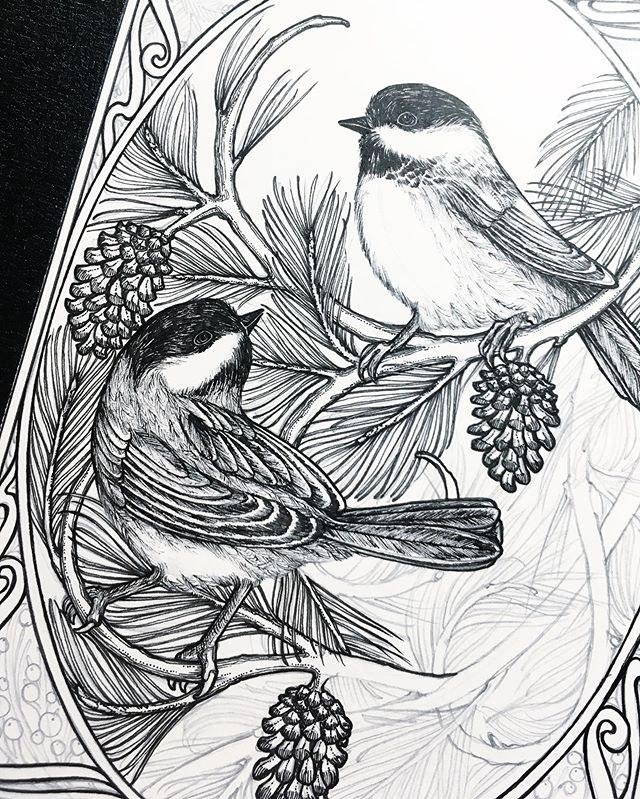 Slowly but surely getting these chickadees inked! ✨✨✨