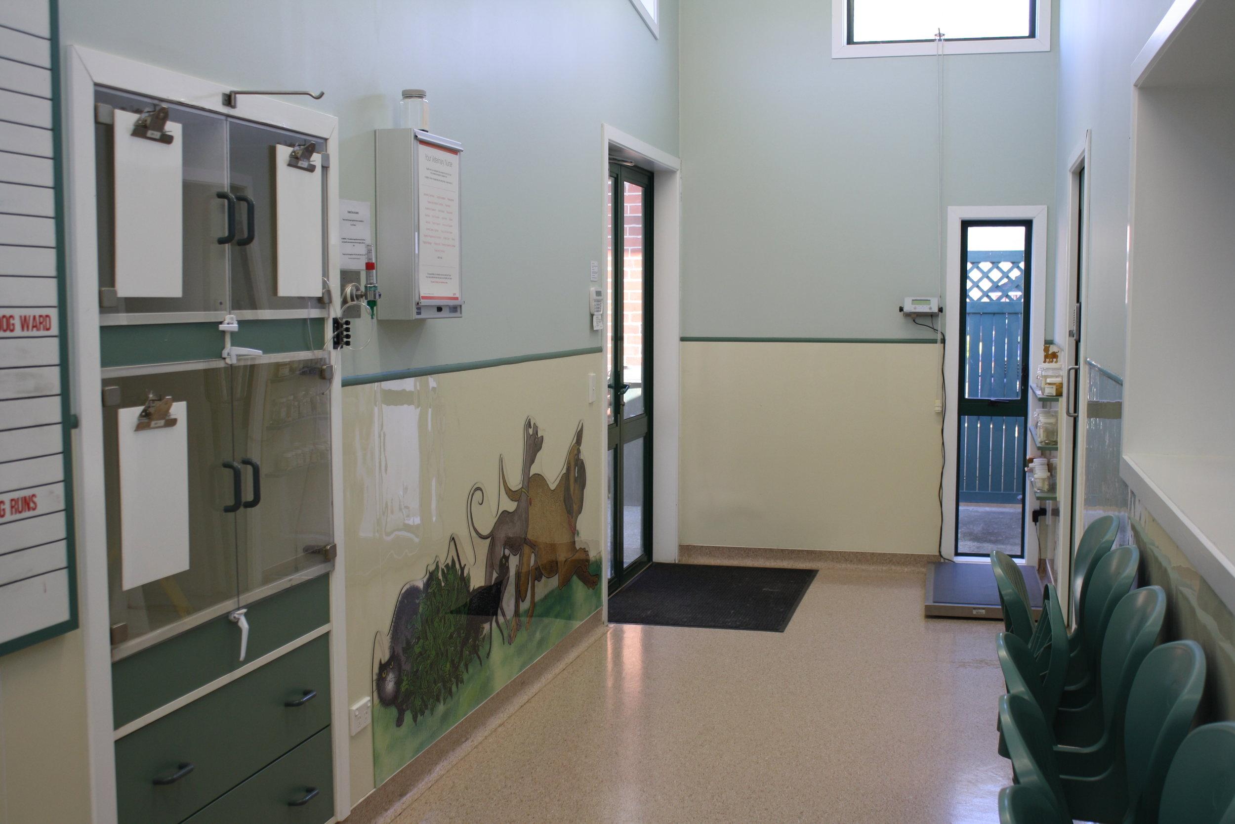 Maidstone Vet Clinic surgery lobby