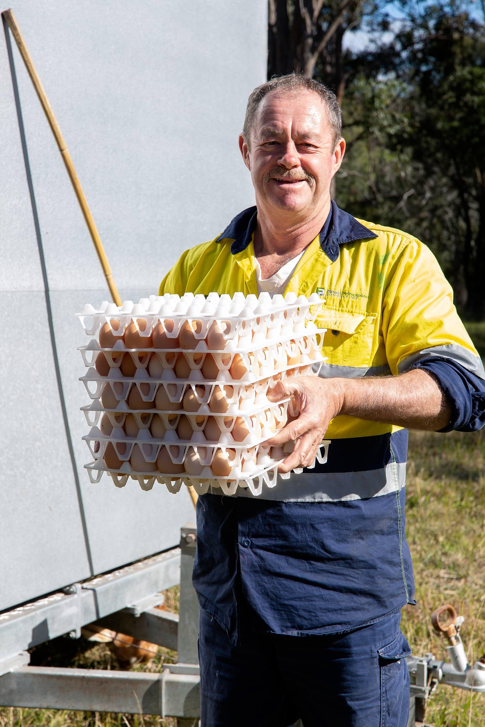 glft-topi-open-range-eggs.jpg